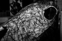 inked skull